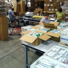 Packaging Plant Assembly
