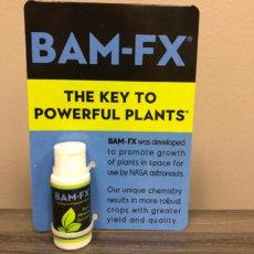 bottle packaging plant solution